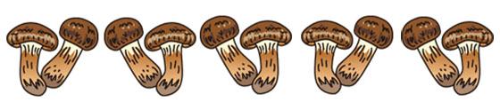 mMashrooms1111