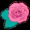 s_f_flower_rose80