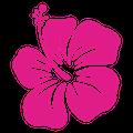 h_flower